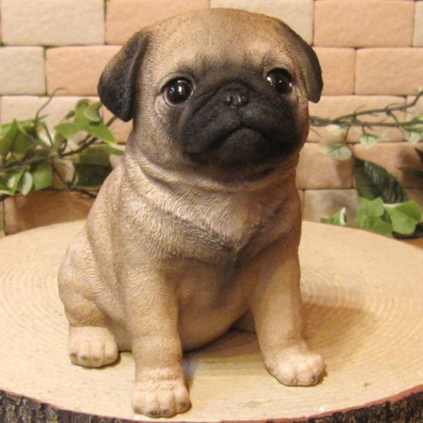 犬の置物 パグ リアルな犬の置物 お座りタイプ 子いぬのフィギア イヌのオブジェ ガーデニング 玄関先 陶器 zakkakirara 10