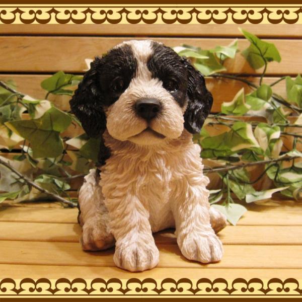 犬の置物 リアルな犬の置物 コッカースパニエルとプードルのMIX コッカープー B&W 子いぬのフィギア イヌのオブジェ ガーデニング 玄関先 陶器|zakkakirara|03