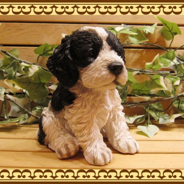 犬の置物 リアルな犬の置物 コッカースパニエルとプードルのMIX コッカープー B&W 子いぬのフィギア イヌのオブジェ ガーデニング 玄関先 陶器|zakkakirara|04