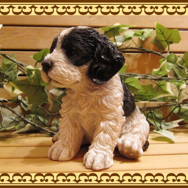 犬の置物 リアルな犬の置物 コッカースパニエルとプードルのMIX コッカープー B&W 子いぬのフィギア イヌのオブジェ ガーデニング 玄関先 陶器|zakkakirara|05