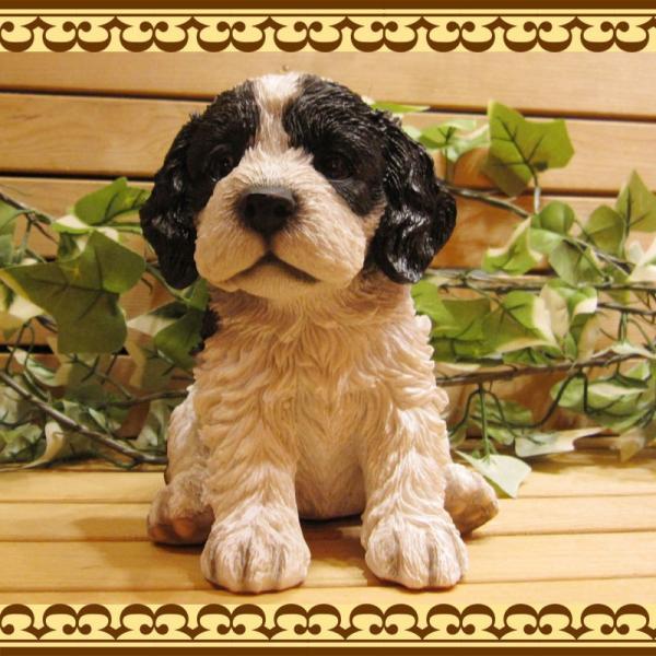 犬の置物 リアルな犬の置物 コッカースパニエルとプードルのMIX コッカープー B&W 子いぬのフィギア イヌのオブジェ ガーデニング 玄関先 陶器|zakkakirara|06
