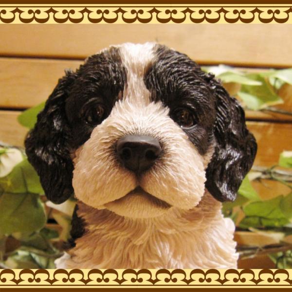 犬の置物 リアルな犬の置物 コッカースパニエルとプードルのMIX コッカープー B&W 子いぬのフィギア イヌのオブジェ ガーデニング 玄関先 陶器|zakkakirara|09