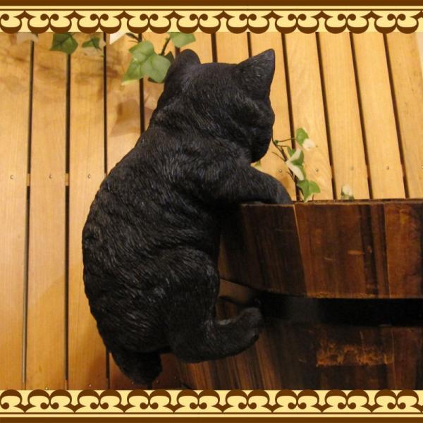 猫の置物 リアルな猫の置物 ぶらさがりベビーキャット 黒ねこ 子ねこのフィギア ネコのオブジェ ガーデニング 玄関先 陶器 クロネコ|zakkakirara|07