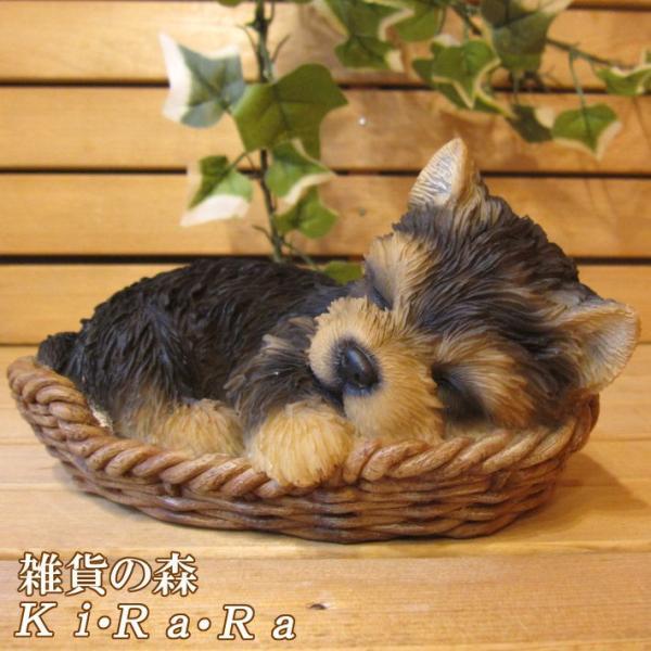 犬の置物 ヨークシャーテリア リアルな犬の置物 バスケットドッグ ヨーキー 子いぬのフィギア イヌのオブジェ ガーデニング 玄関先