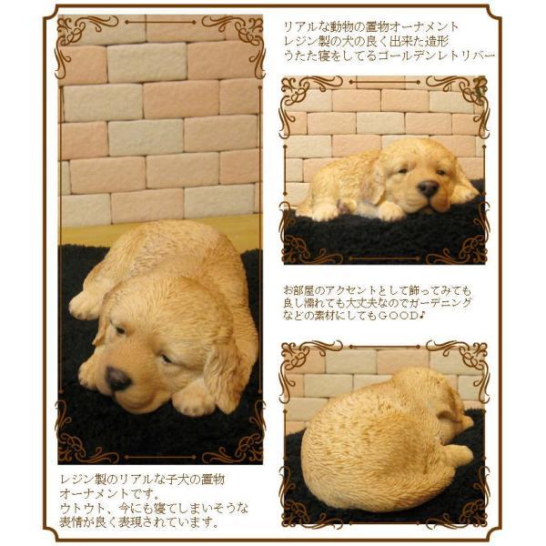 犬の置物 ゴールデンレトリバー リアルな犬の置物 ウトウト・ねむねむ 子いぬのフィギア イヌのオブジェ ガーデニング 玄関先 陶器 zakkakirara 02