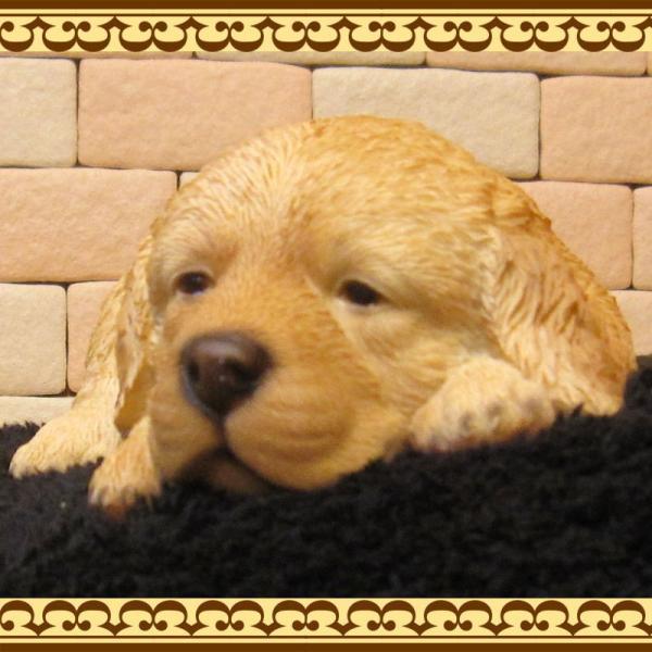 犬の置物 ゴールデンレトリバー リアルな犬の置物 ウトウト・ねむねむ 子いぬのフィギア イヌのオブジェ ガーデニング 玄関先 陶器 zakkakirara 05