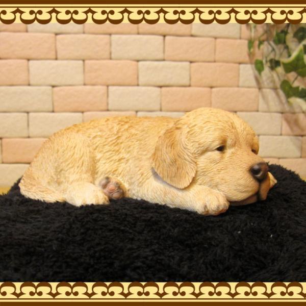 犬の置物 ゴールデンレトリバー リアルな犬の置物 ウトウト・ねむねむ 子いぬのフィギア イヌのオブジェ ガーデニング 玄関先 陶器 zakkakirara 07