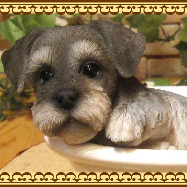 犬の置物 シュナウザー 置物 バスタブ ドッグ 入浴中 リアルな犬のフィギア 子いぬのオブジェ イヌ ガーデニング 玄関先 陶器|zakkakirara|07