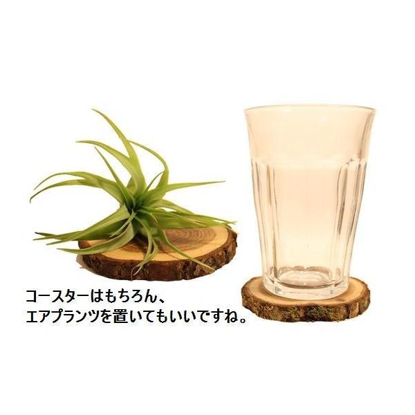 コースター セット 4枚 天然木 オーク材 オークウッド 輪切り Tree 4 Tea|zakkamag|03