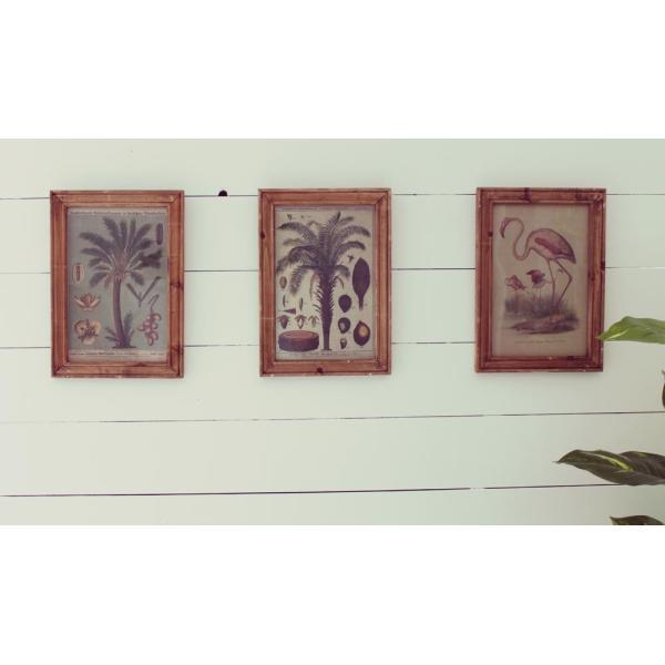 オールドルック フレームポスター ボタニカル A ポスターフレーム 壁掛け 木製 額縁 フレーム アンティーク zakkayafree 02