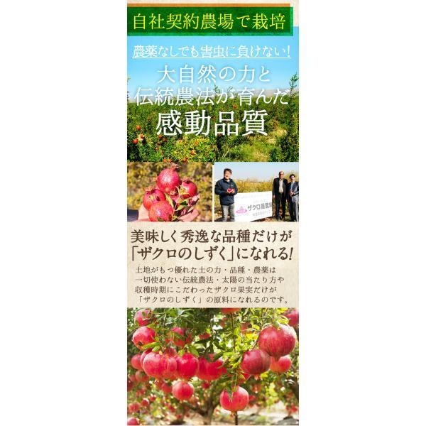 ざくろジュース ザクロのしずく スティックタイプ 20ml×15本入(12000円以上送料無料) ザクロジュース 冷え 免疫力  ザクロ酢 葉酸|zakuroya|19