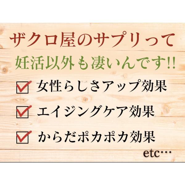 妊活 サプリメント ザクロ エラグ酸 葉酸 マカ 亜鉛 ビタミンC  ビタミンB12 栄養機能食品 送料無料 石榴の滴(ザクロのしずく) 男  男性 zakuroya 21