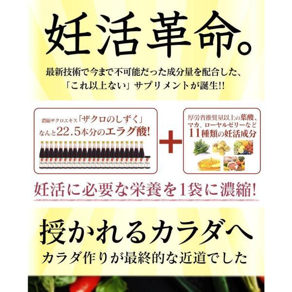 妊活 サプリメント ザクロ エラグ酸 葉酸 マカ 亜鉛 ビタミンC  ビタミンB12 栄養機能食品 送料無料 石榴の滴(ザクロのしずく) 男  男性 zakuroya 04