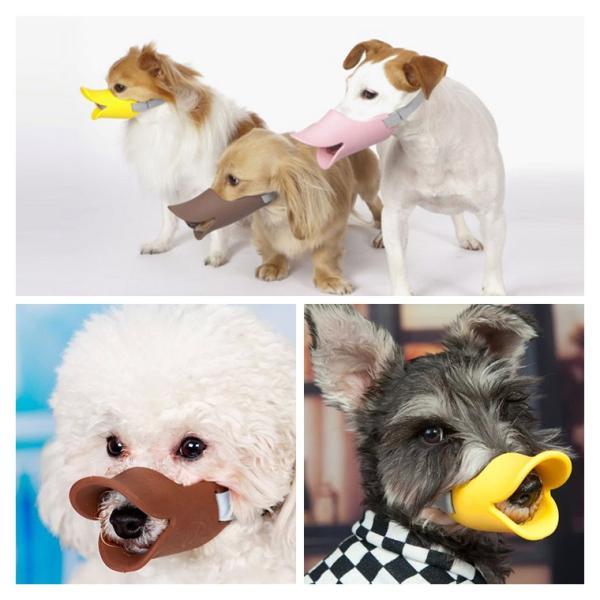ペット 犬 超人気 吠えを防ぐ ペット用品 便利 出かけ 激安 全7色 犬アクセサリー ファッション 雑貨|zakzak|05