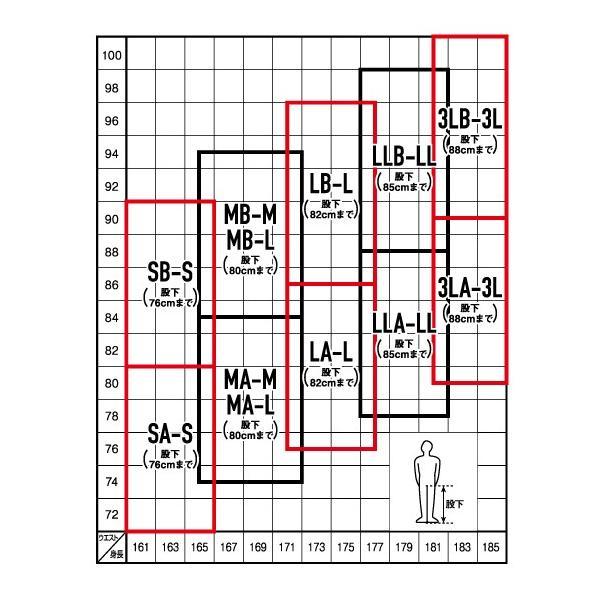 ダイワ スリムウェーダー DSW-4200VR 先丸中割  / 鮎|zeniya-tsurigu|04