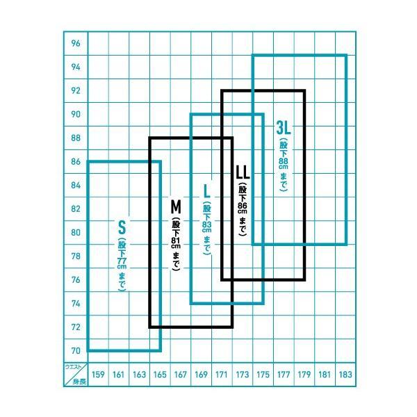 半額!!ダイワ ウェーダー スーパーブレスストッキングウェーダー SBW-3001S (ウェストハイ型・ソックス先丸) zeniya-tsurigu 05