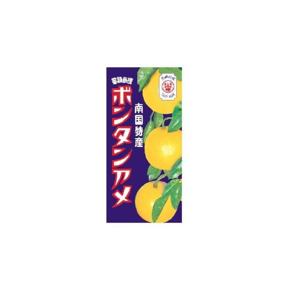 ボンタンアメ 14粒入×10個  セイカ食品(株)