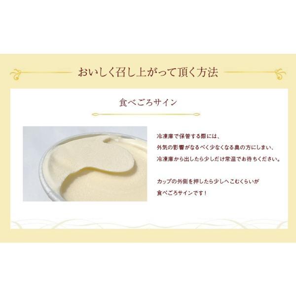 遅れてごめんね父の日 とろけるスプーン付き ハーゲンダッツ アイスクリーム セレクトBOX 定番人気 11個 zenzaemon 09