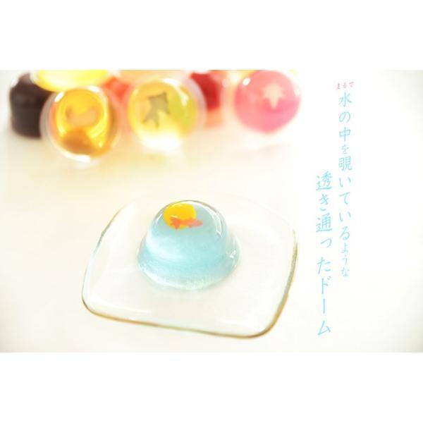 送料無料 京都宇治 菓楽 涼々ゼリー 4種詰め合わせ 12個 お菓子|zenzaemon|05