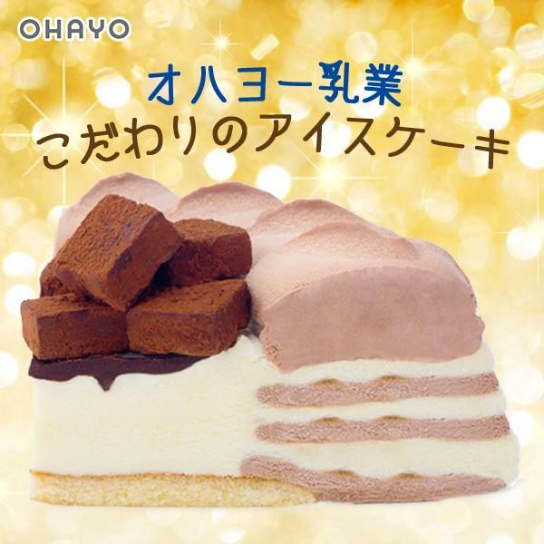 クリスマス アイスケーキ オハヨー乳業 生チョコ アイスクリームケーキ デコレーションケーキ xmasicecream|zenzaemon|02