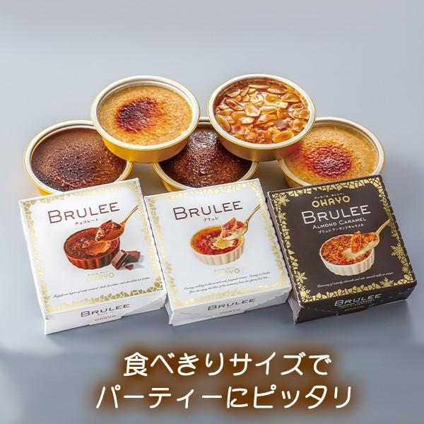 12/22-24お届け クリスマス オハヨー乳業 BRULEE GIFT ブリュレ ギフト アイスクリーム|zenzaemon|02