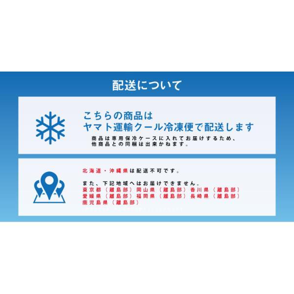 12/22-24お届け クリスマス オハヨー乳業 BRULEE GIFT ブリュレ ギフト アイスクリーム|zenzaemon|09