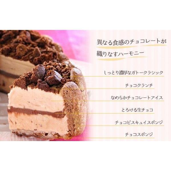 誕生日ケーキ バースデーケーキ チョコレートのアイスクリームデコレーションケーキ 4号 アイスケーキ 洋菓子|zenzaemon|03