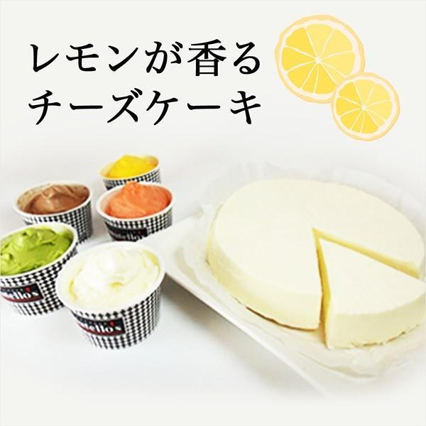 高級 アイス ドナテロウズ ジェラート(15個)・チーズケーキ ギフト  お菓子 詰め合わせ お祝 アイスクリーム|zenzaemon|03