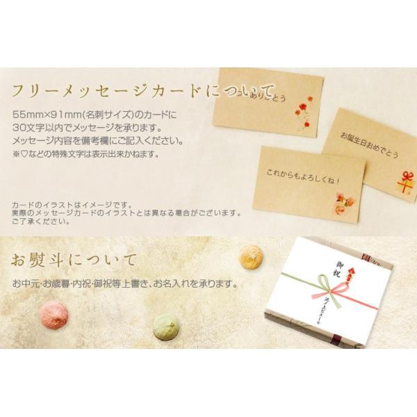 池ノ上ピエール 彩り焼き菓子セット 16個 有名 人気 スイーツ お菓子 ギフト プレゼント|zenzaemon|06