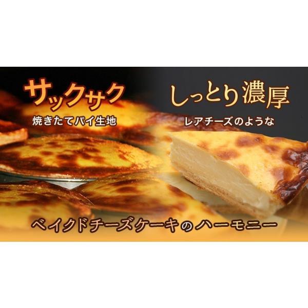 数量限定 ティンカーベル チーズベーク(16センチ)北海道 北見 チーズケーキ 誕生日 プレゼント|zenzaemon|05