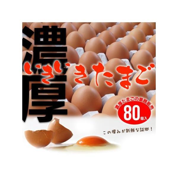 黄身の色と濃厚度合いがハンパない卵  業務用 いきいきたまご(80個) 産地直送 養鶏場直送 送料込み