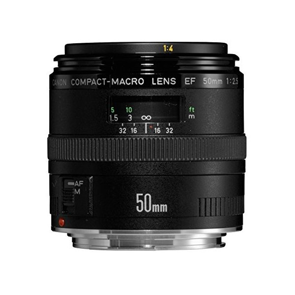 Canon 単焦点マクロレンズ EF50mm F2.5 コンパクトマクロ フルサイズ対応 中古商品|zerotwo