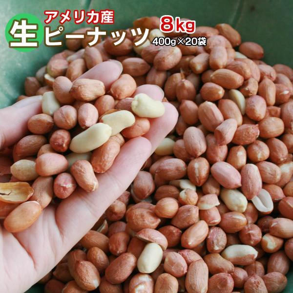 生ピーナッツ 合計10kg 500g×20袋セット アメリカ産 無添加 薄皮付きピーナツ