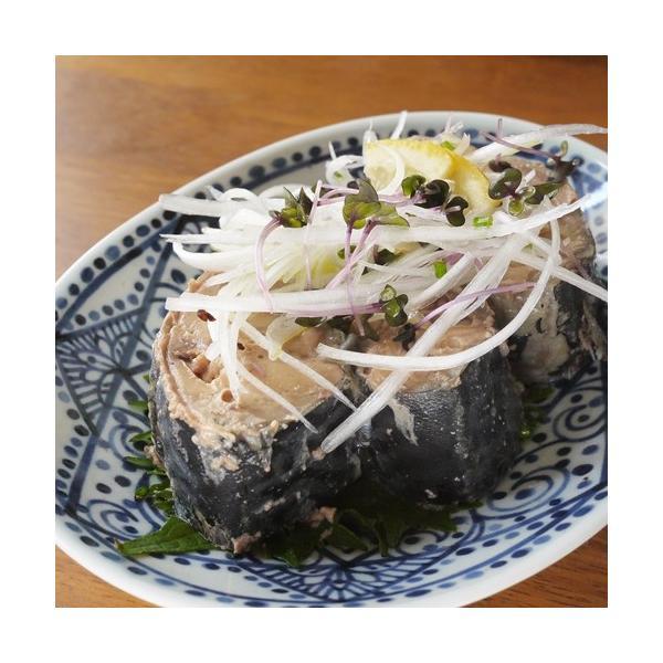 無添加・レトルトお魚お惣菜と缶詰セット(惣菜セット)|zyr|16