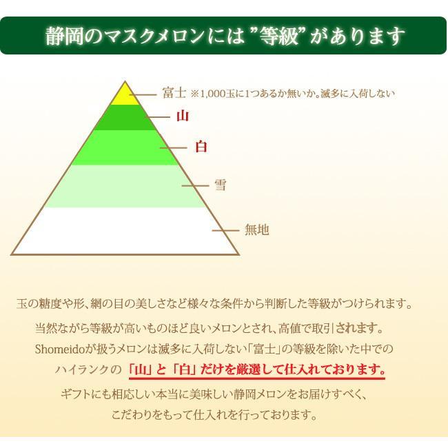 静岡産クラウンメロン 白等級 大玉 サイズ 1個 マスクメロン フルーツ くだもの 贈り物 贈答 プレゼント ギフト 高級 食べ頃明記|1999-shomeido|05