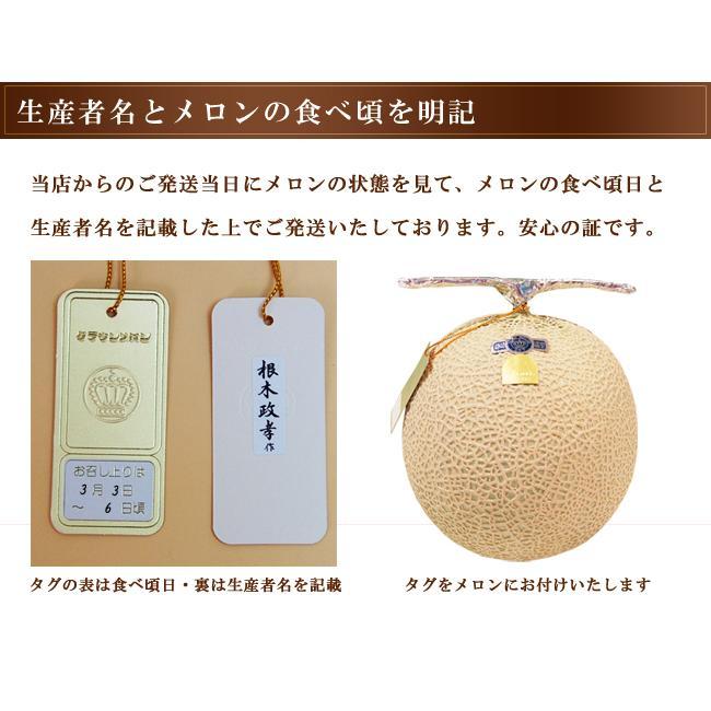 静岡産クラウンメロン 白等級 大玉 サイズ 1個 マスクメロン フルーツ くだもの 贈り物 贈答 プレゼント ギフト 高級 食べ頃明記|1999-shomeido|09