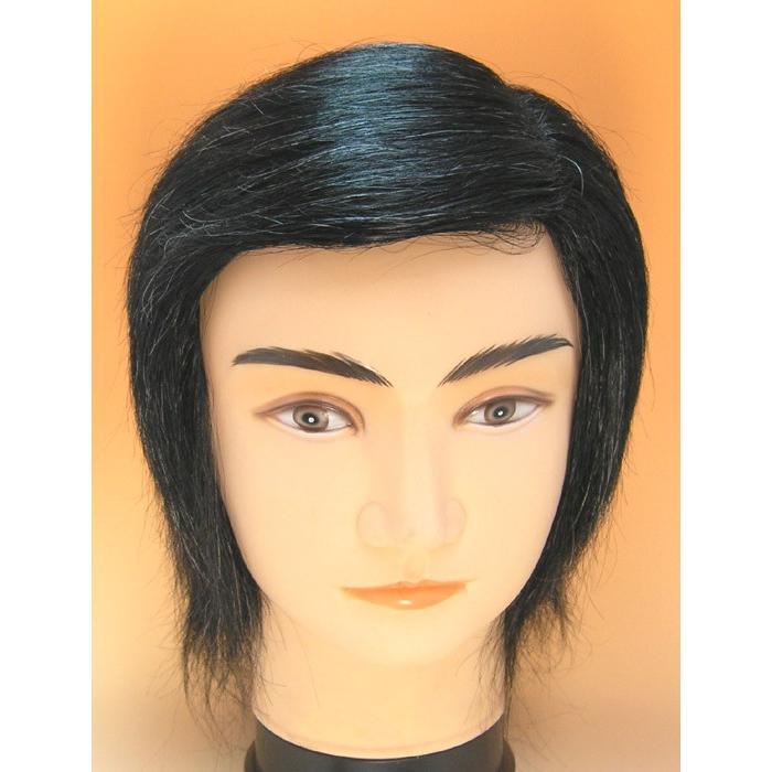 男性全頭オール左パート、白髪10%、サイズ58cm 総手植