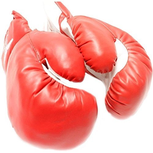 AGE 10-13 KIDS 10 OZ BOXING GLOVES YOUTH PRACTICE TRAINING MMA Faux Le