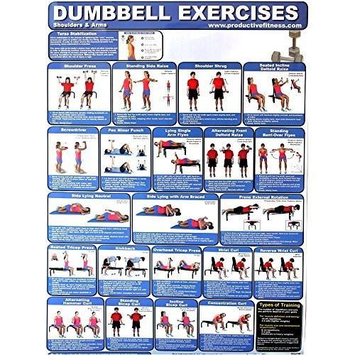 【爆売り!】 Productive Fitness Products Laminated Poster Laminated Dumbbell Exercises Products at for at, パネットワンpane(t)one:df5b5d13 --- airmodconsu.dominiotemporario.com
