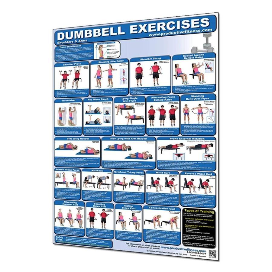 大勧め Productive Fitness Exercises Productive Poster Series Upper Dumbbell Exercises Upper Body Non-Lam, 文具事務用品画材の店 芙蓉堂:72f0d298 --- airmodconsu.dominiotemporario.com
