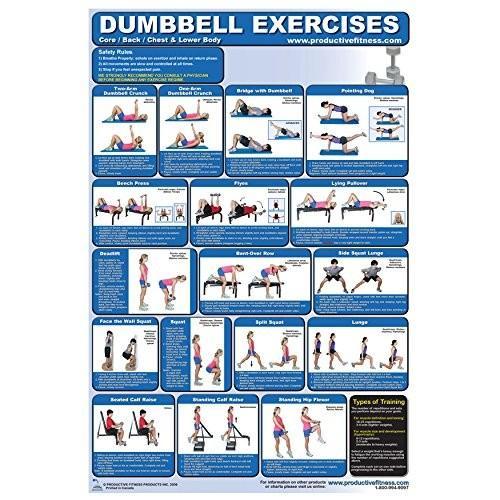 日本人気超絶の FIT1ST Lower Body Dumbbell Exercise Poster, Hamee(ハミィ) 2e65e87f