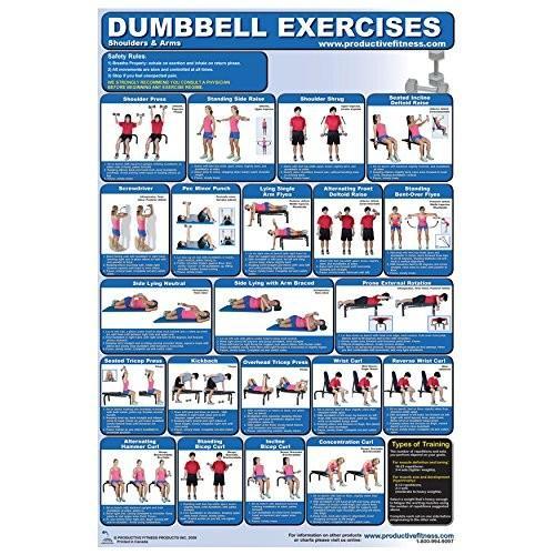 正規 FIT1ST Arm Shoulders & FIT1ST Arm Dumbbell Exercise Dumbbell Poster, 花と観葉植物のChouchou,te:a30f0a41 --- airmodconsu.dominiotemporario.com