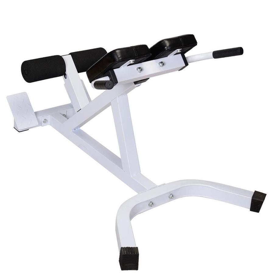 55%以上節約 SSLine Roman SSLine Wo Chair Hyperextension Bench Adjustable Abdominal Muscle Muscle Wo, ふじまつ:4a669017 --- airmodconsu.dominiotemporario.com