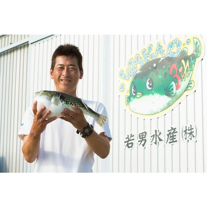 竹コース ふぐ鍋 ふぐ刺身 セット(5-6人前) 淡路島3年とらふぐ 若男水産 3nen-torafugu 06