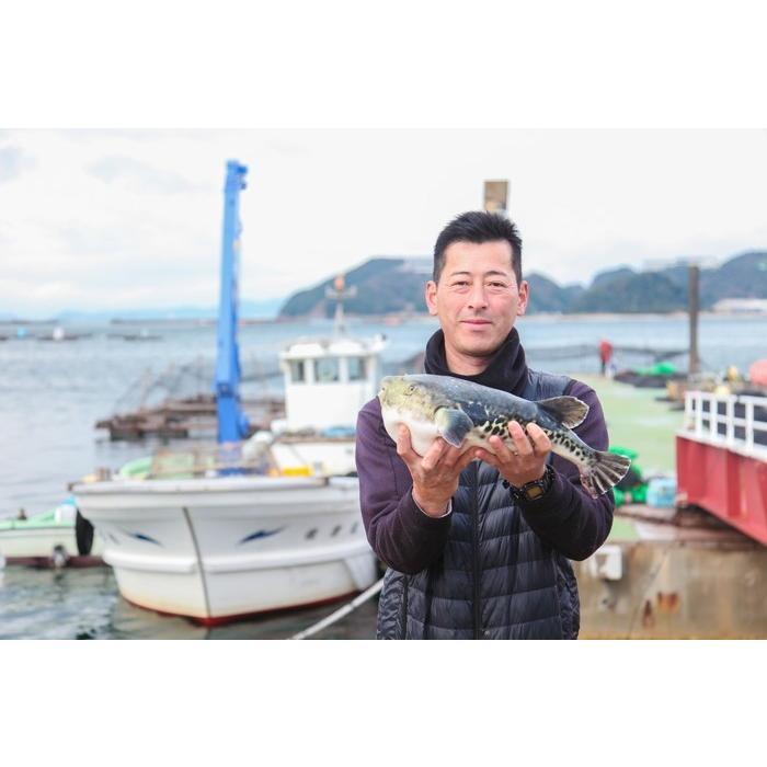 梅コース ふぐ鍋 セット(2人前) 淡路島3年とらふぐ 若男水産|3nen-torafugu|06