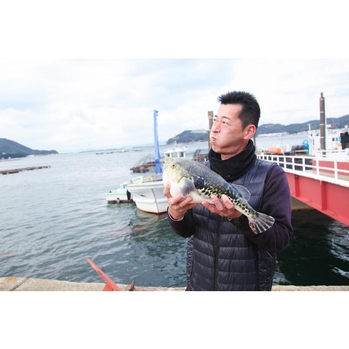 梅コース ふぐ鍋 セット(5-6人前) 淡路島3年とらふぐ 若男水産|3nen-torafugu|06