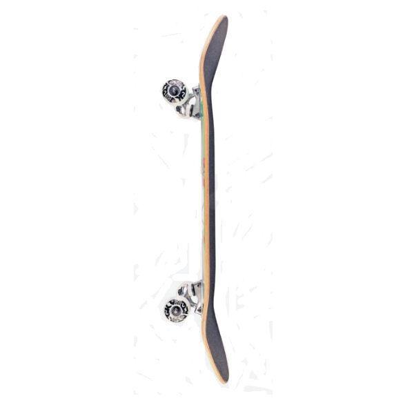 【DGK】ディージーケー DGK BLOSSUM COMPLETE DECK Skateboard コンプリート  スケボー 大人 デッキ KIDS キッズ スケートボード 板 初心者|54tide|05