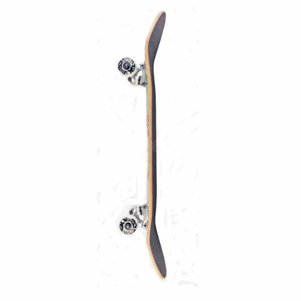 【DGK】ディージーケー DGK STK COMPLETE DECK Skateboard コンプリート  スケボー 大人 デッキ KIDS キッズ スケートボード 板 初心者 54tide 06