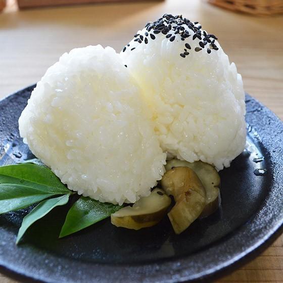【定期便】精米5kg×3回(3カ月コース)南魚沼産コシヒカリ|5602miwa|07
