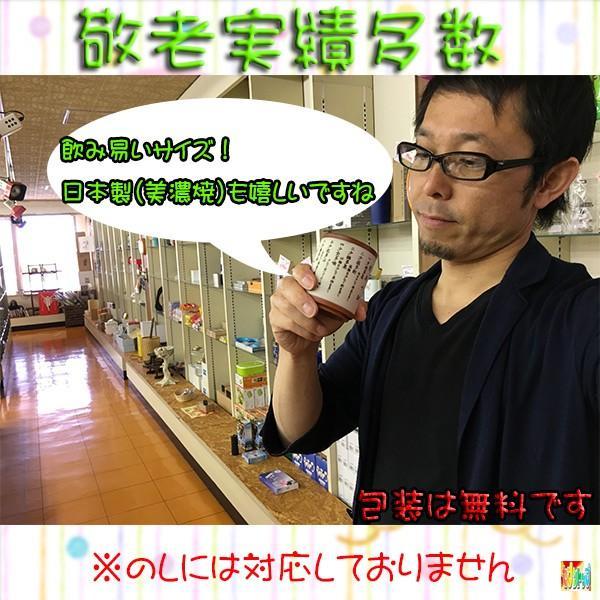 健康十訓 ものしり 朱泥 湯呑み 1P(熨斗・包装無料対応) 7top 03
